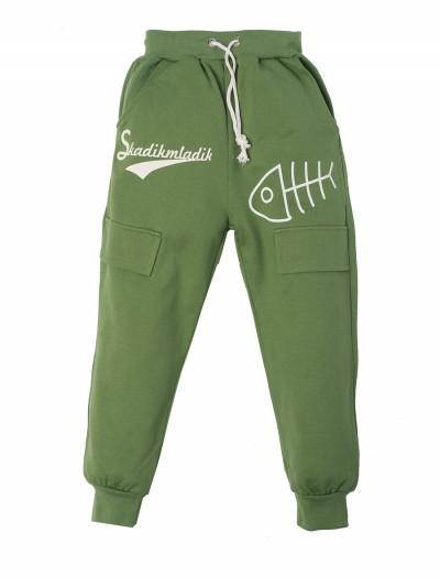 Штаны для мальчиков, зеленые
